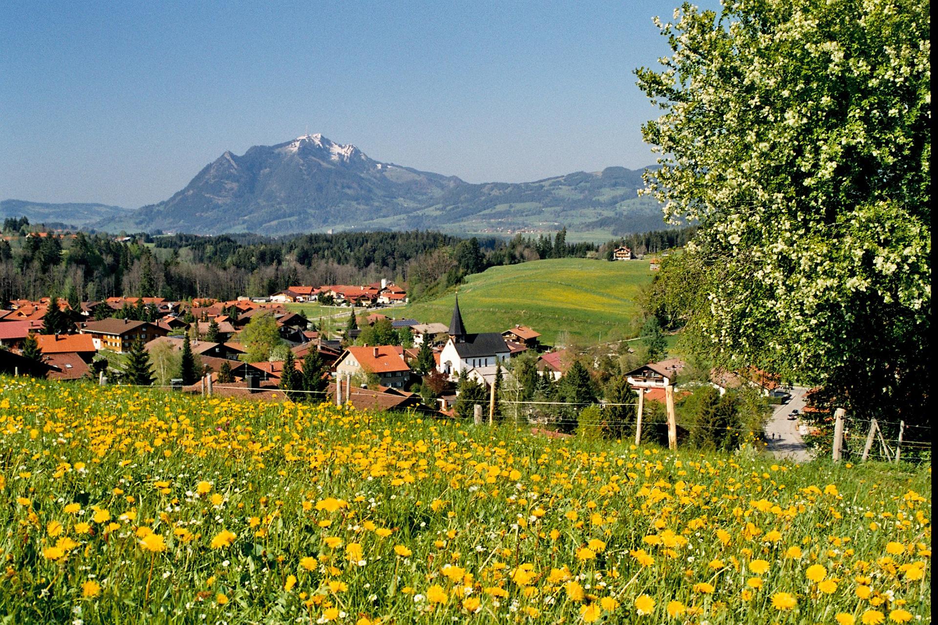 buhmann-fewo-obermaiselstein-panorama-4-startseite-parallax